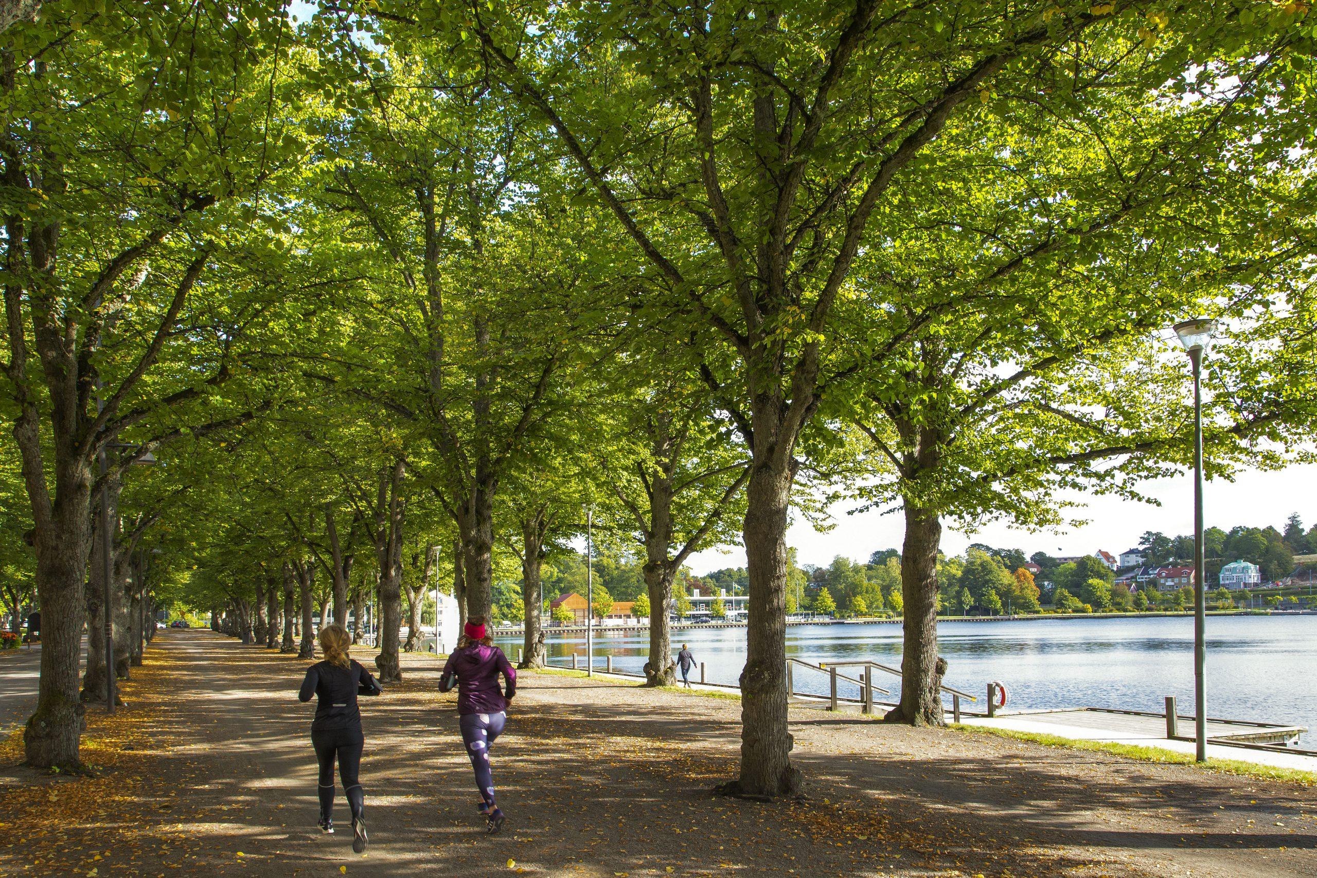 Joggingtur vid Växjösjön